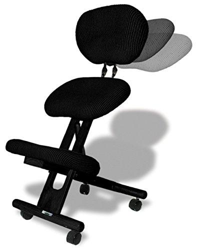 cinius Silla ergonómica Profesional Color Negro con Respaldo